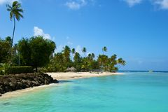 Beach in Tobago, Caribbean. Pigeon Point beach in Tobago, Caribbean Royalty Free Stock Image