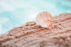 beach toned background Royalty Free Stock Image
