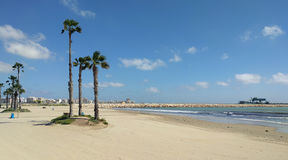 Beach of Torrevieja Stock Photography