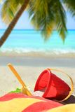 Beach toys, palm tree and ocean Stock Photography