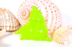 Beach toys and seashells on white background Stock Image
