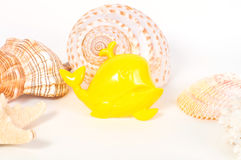 Beach toys and seashells on white background Stock Photos