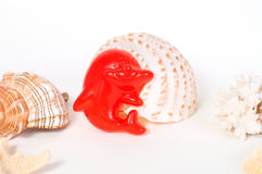 Beach toys and seashells on white background Stock Images
