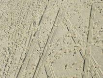 Beach Tracks. All kinds of Tracks at the Beach Stock Photo