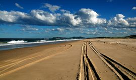 Beach tracks. 4x4 tracks along a sandy beach Royalty Free Stock Image