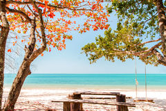 Beach and trees change color with swing hang in summer Royalty Free Stock Images
