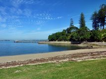 Beach with trees with a small boat in the background Royalty Free Stock Images