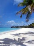 Beach tropical Stock Photos