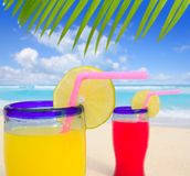 Beach tropical cocktails in turquoise beach. Beach tropical cocktails palm tree leafl turquoise beach on Caribbean Sea Royalty Free Stock Image