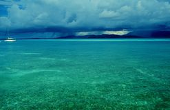 beach and tropical forest. Taken at PALOMINO ISLAND with El Yunque rain forest at the back Royalty Free Stock Image