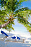 Beach on tropical island Stock Photo
