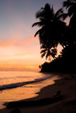 The beach on the tropical island. Dawn. Indonesia. Indian Ocean. Stock Photography