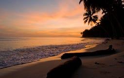 The beach on the tropical island. Dawn. Indonesia. Indian Ocean. Stock Photos