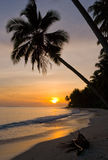 The beach on the tropical island. Dawn. Indonesia. Indian Ocean. Royalty Free Stock Photography