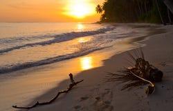 The beach on the tropical island. Dawn. Indonesia. Indian Ocean. Royalty Free Stock Photos