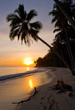 The beach on the tropical island. Dawn. Indonesia. Indian Ocean. Royalty Free Stock Images