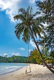 Seesaw on the beach of a tropical. Beach of a tropical island Stock Images