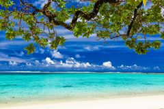 Beach on tropical island during sunny day framed by a tree with Royalty Free Stock Photos