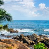 Beach tropical ocean with boulders and palm trees Royalty Free Stock Photos