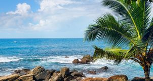 Beach tropical ocean with palm trees and lagoon. Wide photo. Beach tropical ocean with boulders, palm trees and lagoon. Wide photo Royalty Free Stock Photo