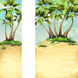 Beach with tropical palm Stock Photo
