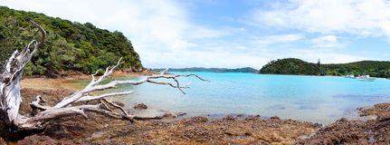 Urupukapuka island, New Zealand. Beach on tropical Royalty Free Stock Photography