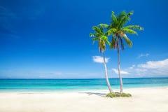 Beach and tropical sea. This is beach and tropical sea Stock Photos