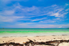 Beach and tropical sea. On blue sky background Royalty Free Stock Image