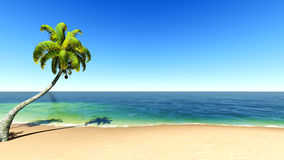 Beach and tropical sea. EPS10 vector. Royalty Free Stock Photography