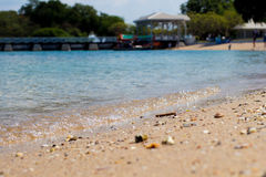 Beach and tropical sea. Sand beach and tropical sea at sunny day Royalty Free Stock Images
