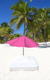 Beach tropical umbrella mattress palm trees Royalty Free Stock Photo