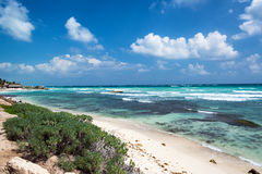 Beach in Tulum, Mexico Stock Photography