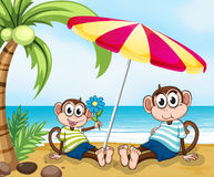 A beach with two monkeys. Illustration of a beach with two monkeys Stock Image