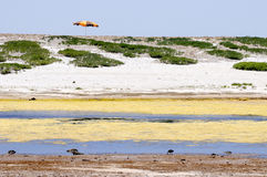 Beach Umbrella. Isolated umbrella and yellow lagoone stock images