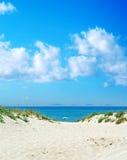 Beach umbrella alone under the blue sky Royalty Free Stock Photography