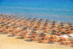 Beach umbrella and sunbeds on the sandy beach Royalty Free Stock Photography