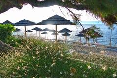 Beach umbrellas Royalty Free Stock Images