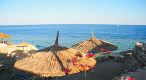 The beach umbrellas. Royalty Free Stock Photo
