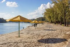 Rows of yellow umbrellas on the beach Stock Images