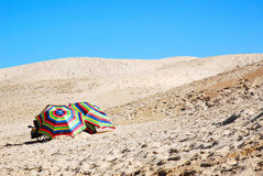 Beach umbrellas on sand dunes Royalty Free Stock Image