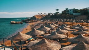 Beach Umbrellas and Sunbeds in Egypt on the Red Sea. EGYPT, SOUTH SINAI, SHARM EL SHEIKH, DECEMBER 3, 2016: Beach umbrellas and sunbeds in Egypt on the Red Sea stock footage