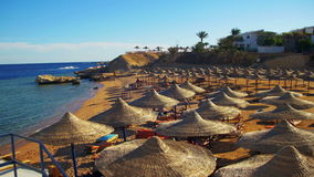 Beach Umbrellas and Sunbeds in Egypt on the Red Sea. EGYPT, SOUTH SINAI, SHARM EL SHEIKH, DECEMBER 3, 2016: Beach umbrellas and sunbeds in Egypt on the Red Sea stock video footage