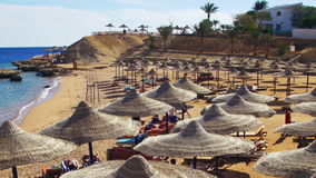 Beach Umbrellas and Sunbeds in Egypt on the Red Sea stock video footage