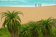 Beach in Umhlanga Rocks, South Africa Stock Image