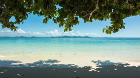 Beach under shadow of tree. Sand beach under shadow of tree stock video