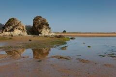 Beach of Urdaibai. Sukarrieta, Bizkaia, Spain Royalty Free Stock Photo