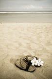 Beach vacation Stock Photography