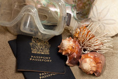 Beach vacation concept. Close-Up of passport, diving mask, sand dollar (Echinoderm), coral , conch shells, and abalone:  Beach Vacation Concept Royalty Free Stock Images