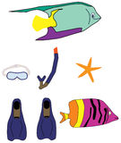 Beach vacation items Stock Image