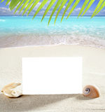 Beach vacation sand pearl shells snail blank paper Royalty Free Stock Image